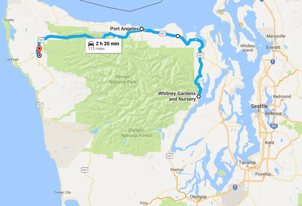 WHitney-Port Angeles-FOrks